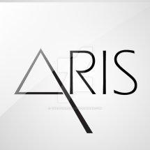 Logo New Aris Shop