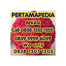 Logo PERTAMA PEDIA