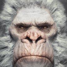 Logo Albino Gorilla Inc.