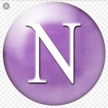 Logo nan stores