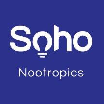 Logo soho electronic