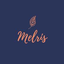 Logo Melris Shop
