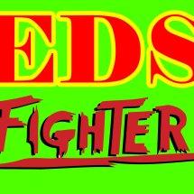Logo EDS FIGHTER