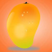 Logo manggo.olshop