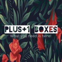 Logo plusoneboxes