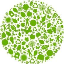 Logo EcoStore1