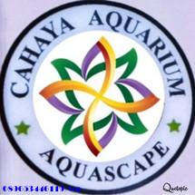 Logo Almagada aquarium