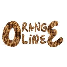 Logo toko O-range