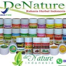 Logo Rumah Obat Herbal Alami