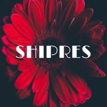 Shipres import store Logo