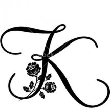 Logo kaminastore270