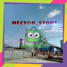 HECTOR_STORE Logo