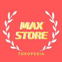 Logo Max 21 Store