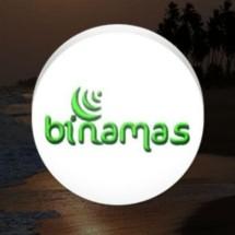Logo Binamas