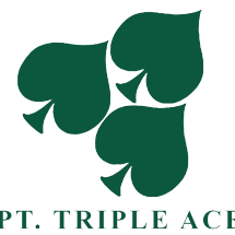 Logo Tripleace Corporation