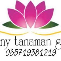 Logo stevany tanaman green163