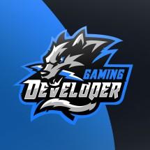 Logo Develoqer