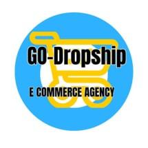 Logo Dropshipgo