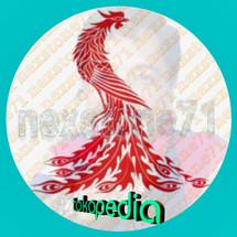 Logo nexstone71