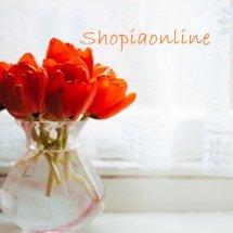 Logo Sophiaonline