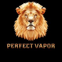 Logo Perfect Vapor