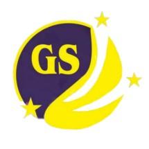 Logo GALAXY.S ACC