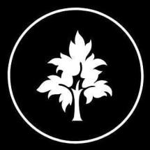 Logo TREE-X
