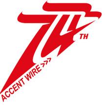 Logo Accent Wire
