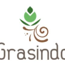 graasindo13 Logo