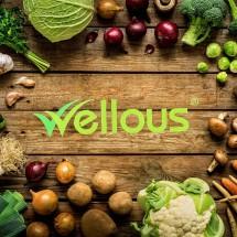 Logo Wellness Indo