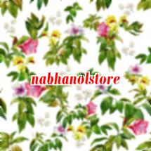 Nabhanolstore Logo