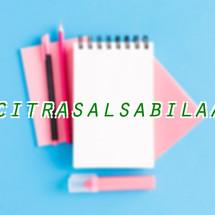 Logo citrasalsabilaa