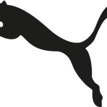 Qing Shop22 Logo