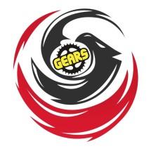 Logo 101 GEARS