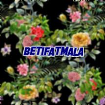 betifatmala Logo
