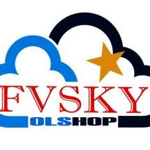 Logo FvSky