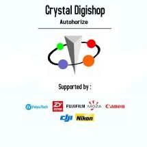 Logo Crystal Digishop