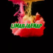 Logo limarjaenap