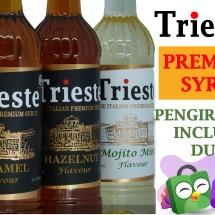 Logo Trieste Syrup