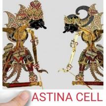 Logo ASTINA CELL