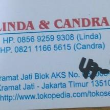 Logo Toko Sepatu Linda