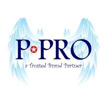 Logo P PRO