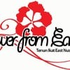 FlowerFromEast