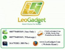 LeoGadget