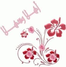 Noura Collection