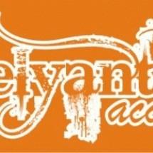 ELYANT Accessories