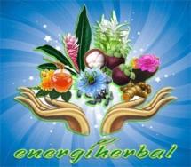 Energi Herbal