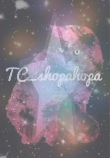 TC Shopahopa