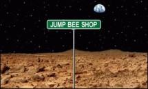 Jump Bee Shop