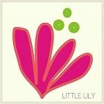 Little Lily Shop
